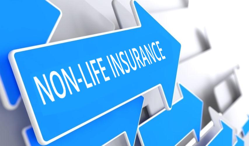 Non-Life Insurance January 2019